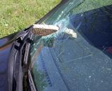 Board falls off a truck - lodges in windshield