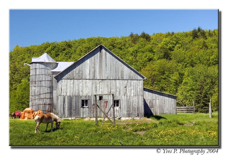 Barn in the country ...