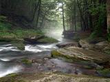 Rondout Creek Dsc09112.jpg