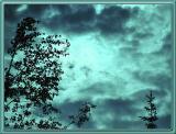 Eerie Alaskan Sky