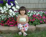 04 June 2004  summer flowers