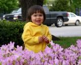 24 April 2004 • Lavender