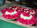 ajmer flowers at the arhai dinka jhonpra mosq