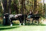 warco wagonette - 1999