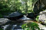 Lewis Creek  4