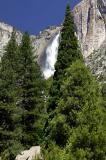 Yosemite Falls 19