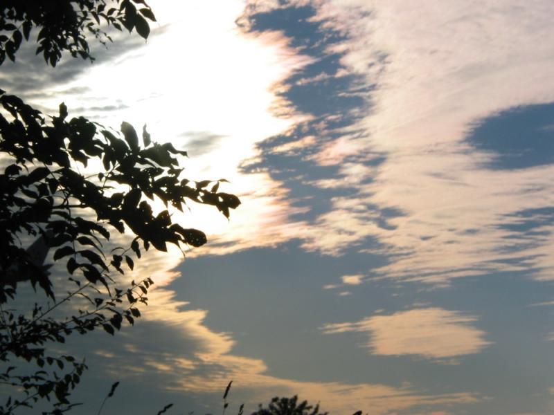 Shiny Sky
