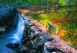 Lane River Falls