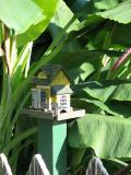 Birdhouse and Banana Plants