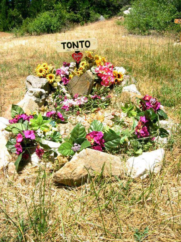 Tontos grave at Michigan Bluff