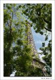 Eifel Tower - Paris