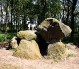 Joop's Dog Log - Monday June 21
