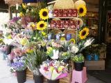 Market Basket, Franklin Village