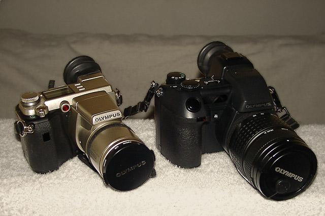 P2209945a.jpg