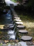 Tollymore stepping stones