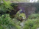 Tollymore bridge