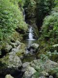 Tollymore cascading waterfall