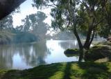 Morning on Cooper Creek