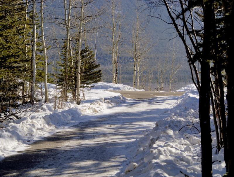 Village Trail
