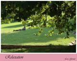 Relaxtion - Sept. 19-04