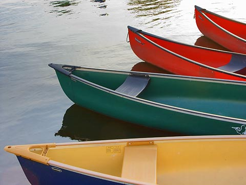 Canoes on Dows Lake