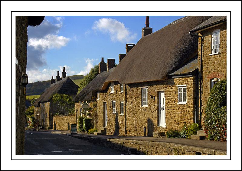More thatch, Abbotsbury