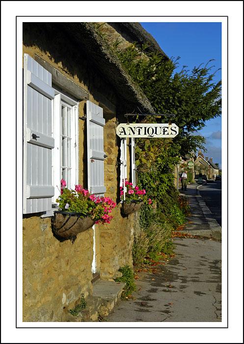 Window-boxes, Abbotsbury