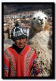 Mi Llama, Peru
