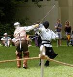 Fencing2.jpg(345)