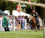 Horseman skills 2.jpg(308)