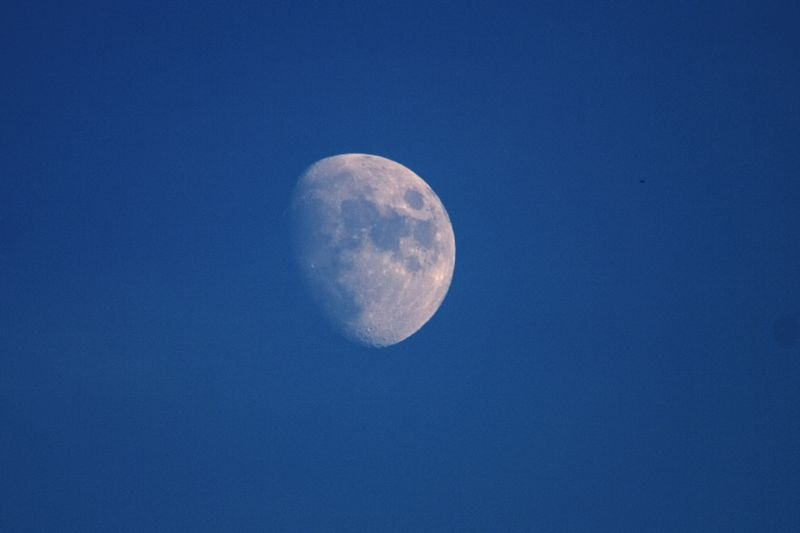 Daylite Gibbous Moon