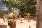 Manaus22.jpg
