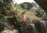 Taxco07.jpg