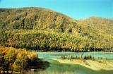 Autumn in Northern Xinjiang (北疆秋色)