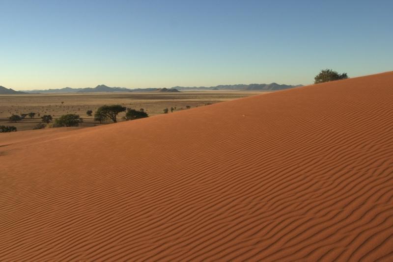 Dune Near SML