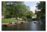 River Cam (Punting)