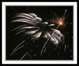 Fireworks - July 3rd 2004