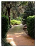 Leu Gardens - Orlando