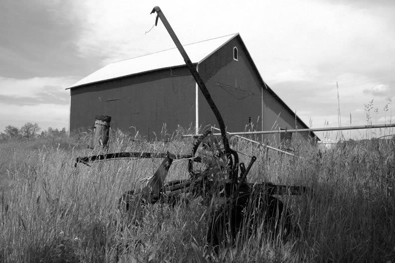 Rural life - B&W