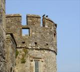 Castle turret at Cahir