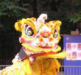 Caribbean Parade dragon