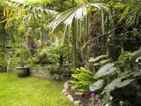 Marc Vissers' Exotic Garden in Belgium