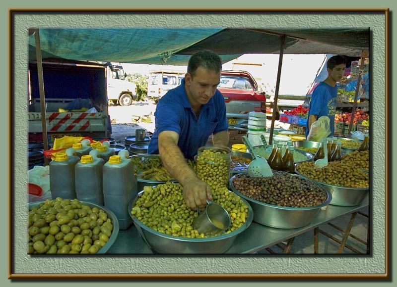 Syrian olives
