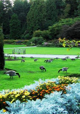 Stanley Park, Vancouver, Canada, 2003