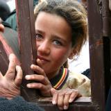 Yaziddi girl