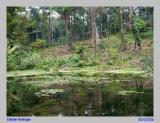 Kolam Alam - Mata Air