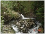 Natural Hot Water from Slamet Mountain