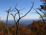 At the intersection of Stony Man Trail and Appalachian Trail