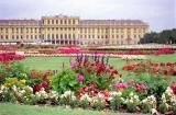Wonderful flowers in the Schloßpark