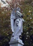 angel_in_the_leaves.jpg